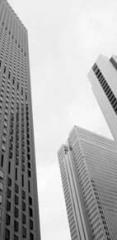 Estate Planning & Wealth Preservation