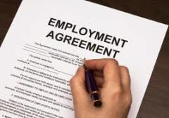 Labor/Employment Litigation