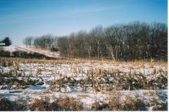 1.5 - 2 acre m/l ridge