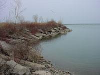 Niagara Frontier Transportation Authority: Port