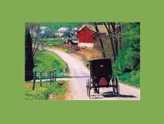 Cincinnati And The Ohio Amish Tour
