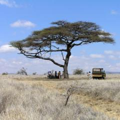 Great Parks Of Kenya tour