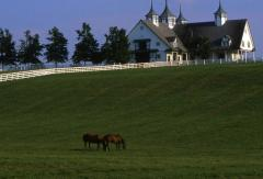 Bourbon, Bridles and Bluegrass tour