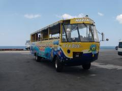 Amphibious Bus Adventure tour