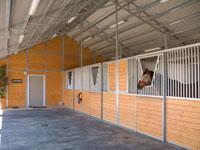 Estate Series Horse Stalls