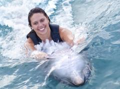 Dolphin Encounter Tour