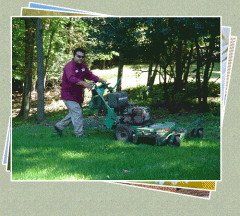 Complete Lawn Maintenance  – Residential and