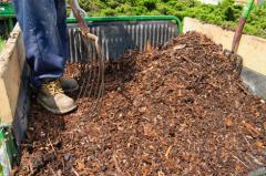 Cleanup with Mulch
