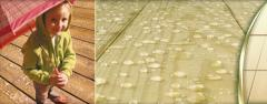 Ecolife™ - Stabilized Weather-Resistant Wood