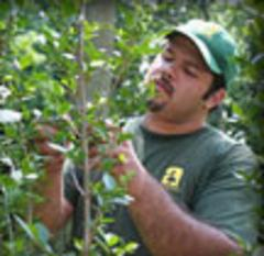 Organic Pest and Disease Control