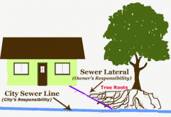 Water and Sewer Lateral Protection Program