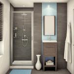 Pivot and Hinge Shower Doors