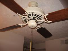 Ceiling Fans Services