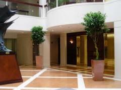 Interiorscapes & Plantscapes