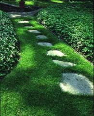Walkway Construction or Restoration