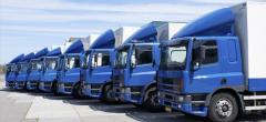 Insurance for a Fleet or a Single Vehicle