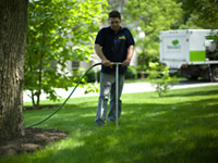 Deep Root and Organic Tree Fertilizer Services