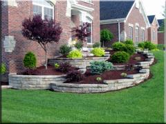 Landscape Installation and Plantings