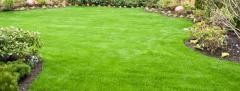 Lawn Care - 5 Step Fertilization Program