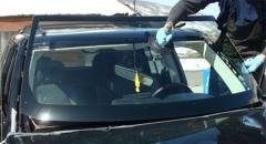 Windshields & Auto Glass