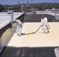 Foam Roofing