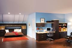 Wallbed and office