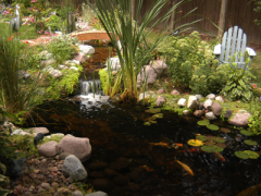 Ponds with Streams