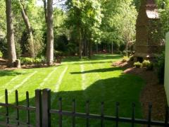 Landscape and gardens design