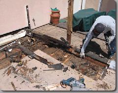 Carpentry, Dry Rot & Framing Repairs