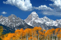 Wild West, Yellowstone and the Grand Tetons Tours