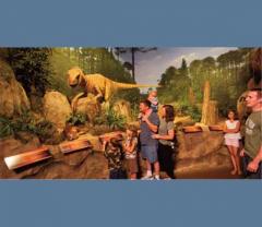Cincinnati-The Creation Museum Tours