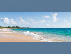 Maui/Lanai Tours