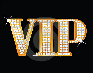 Marketing program - VIP - A leader of the market
