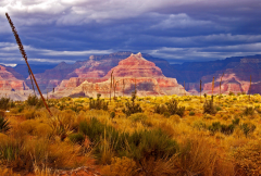 Grand Canyon Overnight Bus Tour