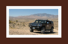 Off-Road Desert Safari Hummer Tour