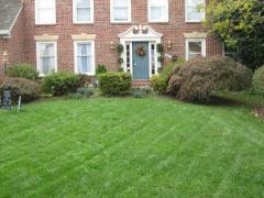 Lawn Mowing & Maintenance Services