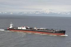 Petroleum and Chemical Transportation