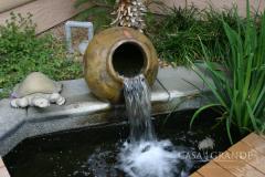 Ponds & Streams