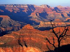 APGA Tour to the Grand Canyon