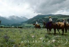 Horseback Day Rides