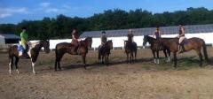 Horseback Riding Group Lessons