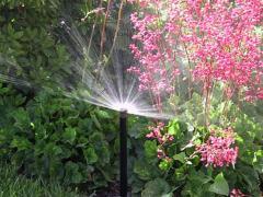 Irrigation Installation & Service