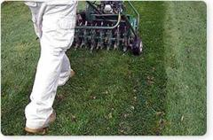 Lawn Care Aeration Service