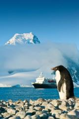 Lindblad Expeditions: 11-night Journey To Antarctica
