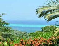 15 Days, Round-Trip Miami