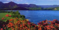 Hawaii Tour Packages