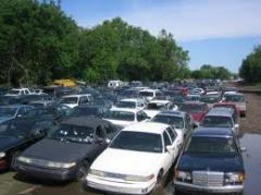 Auto Salvage Services