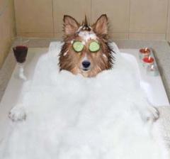 Pampered Bathing
