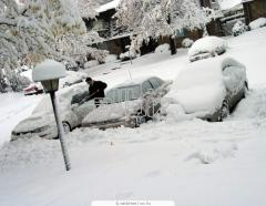Snow Plowing & Shoveling