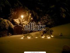 Holiday Lighting & Decorations